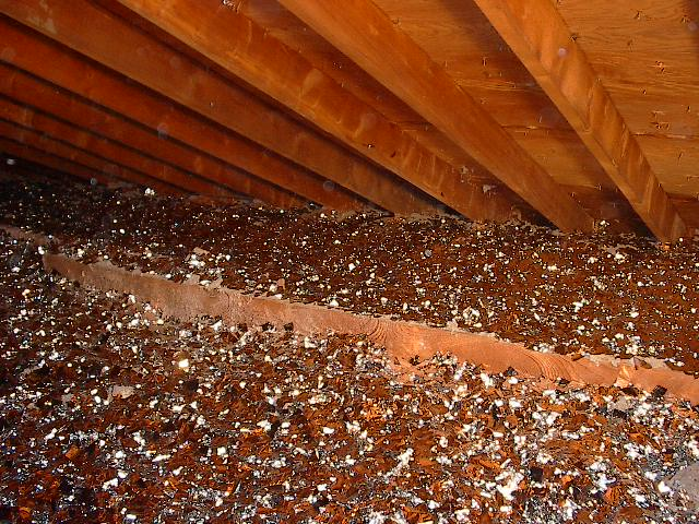 Radiant Barrier Energy Conservation Tubular Skylights And Attic Insulation